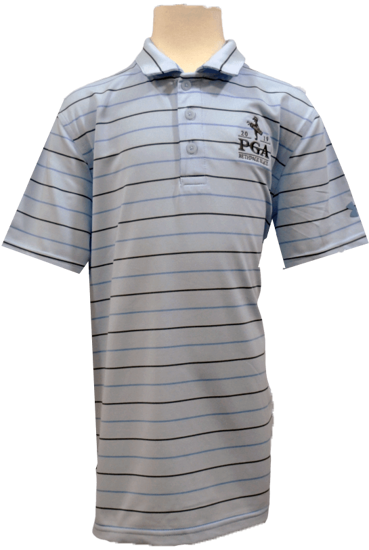 Picture of UA BOYS PERFORMANCE STRIPE 2.0 POLO